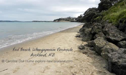 Red Beach Whangaparaoa Peninsula Auckland New Zealand