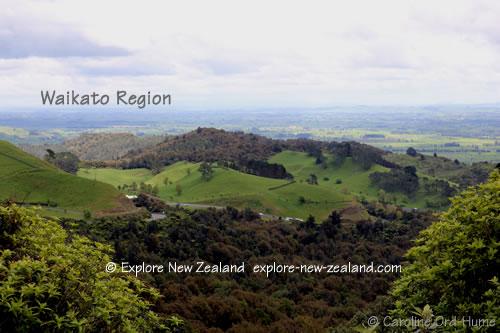 Landscape View of Waikato New Zealand Region